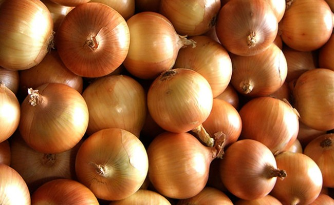 favco onions