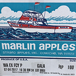apples - marlin