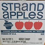 apples - strand